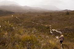 Red Hills Range