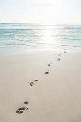Beach (john white photos) Tags: ocean sea sun beach coast australian australia coastal footsteps southaustralia wanna lincolnnationalpark eyrepeninsula