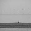 down by the sea (fotobananas) Tags: sea sand wallasey wirral newbrighton merseyside windturbines fotobananas