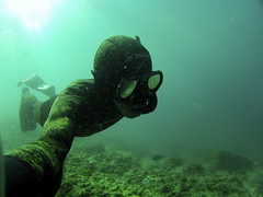 diving at gold coast (N.Checkley) Tags: life fun free diving relaxed goldcoast gopro breathhold hero2