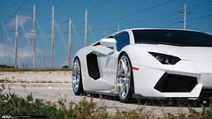Lamborghini Aventador ADV5.2 Track Spec CS (ADV1WHEELS) Tags: track cs lamborghini spec concave adv1 forgedwheels aventador advanceone deepconcave adv52 adv1wheels lp7004 advone adv52ts adv52tscs adv52cs