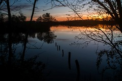 Etang dans la Dombes (Mat-S) Tags: light sunset shadow lake france water reflections lyon lumière etang 2014 dombes