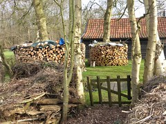 Wood, Rottige Meente 2017 (Alta alatis patent) Tags: rottigemeente spring cottage wood fence garden heating