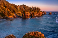 Evening on the coast (Cole Chase Photography) Tags: oregon pacificnorthwest pacificcoast samuelboardman