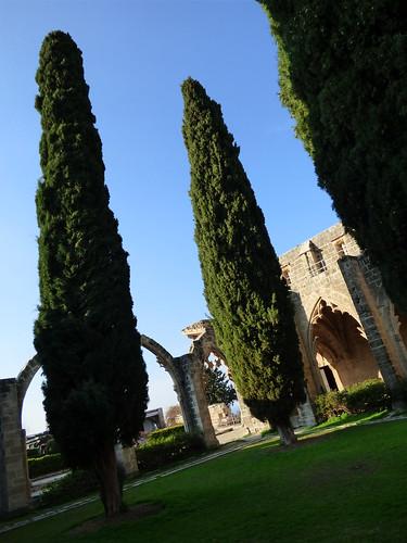 Bellapais Abbey, cloister (2)