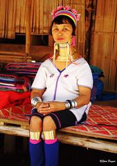 0S1A1412 (Steve Daggar) Tags: thailand chiangmai culture portrait costume longneck karinlongneck hilltribe candid