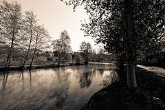Montrésor (GillesAdrien) Tags: nikon france nature europe eau water blackandwhite tourraine loches arbre trees