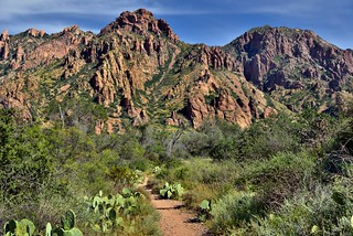 A Hiking Trail in Big Bend National Park