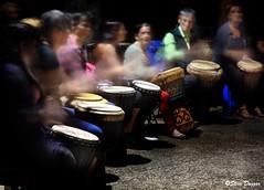 0S1A5636 (Steve Daggar) Tags: terrigal drummers drumming firetwirling hoops hoopspinners terrigalflowjam