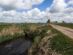 Bûtefjild (Jeroen Hillenga) Tags: bûtefjild borenlaan sloot friesland fryslân netherlands nederland feanwâlden landscape landschap countryside platteland wolken