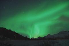 Aurora Borealis über Kleppstad (clemensgilles) Tags: nordlys norway nordland lofoten polar lights northern night aurora borealis