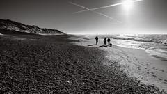 Family Walk (Poul_Werner) Tags: danmark denmark familie klegod beach dune family hav klit ocean sea shadow skygge sollys strand sunlight ringkøbing centraldenmarkregion dk