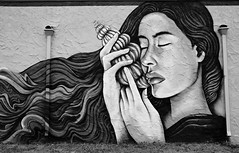 Listening To The Song Of The Sea (sarahellenspringer) Tags: wallart mural hands face wall art 7dwf bwthursday beauty shell hair creative