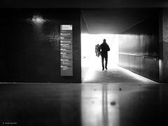 It's rain again II (René Mollet) Tags: rain man spring umbrella underground sbb station blackandwhite bw backlight silhouette street streetphotography shadow schwarzweiss streetart streetphotographiebw renémollet zuiko penf monchrom monochromphotographie