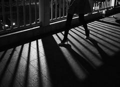 heels (dr.milker) Tags: taiwan taipei bw blackandwhite noiretblanc negroyblanco woman people heels stilettos night street urban civicboulevard taipeistation overpass 台灣 台北 都市 黑白 街拍 人 女性 高跟鞋 台北車站 市民大道 天橋 夜晚
