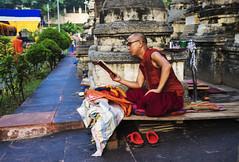 Lectura (Nebelkuss) Tags: india bihar bodhgaia asia monje monk budismo budista buddhism buddhist fujixt1 fujinonxf23f14