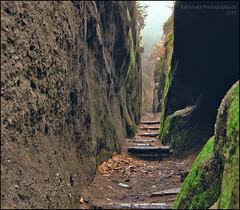 Durch diese hohle Gasse... (rafischatz... www.rafischatz-photography.de) Tags: germany saxony oybin canyon sandstone pentax