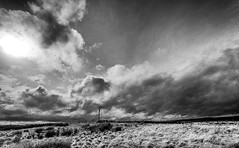 Winters Hill Gibbet (JJFET) Tags: winters hill gibbet wallington northumberland harwood forest