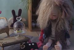 Fönn (Sometimes Dolls) Tags: sometimesdoll bjd dim doll aria custom faceup handmade
