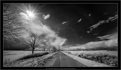 Sony A7R IR with Voigtlander Heliar-Hyper Wide 10mm f/5.6 Aspherical (Dierk Topp) Tags: a7r bw himmel ilce7r ir sonya7rir voigtlanderheliarhyperwide10mmf56aspherical clouds infrared landscapes monochrom sw sony wolken blackandwhite nature landscape road mobilestock outdoors sky nonurbanscene scenics cloudsky ruralscene tree travel nopeople sunlight cloudscape beautyinnature blackcolor street sun