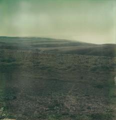 landscape (lawatt) Tags: ranch landscape pastoral pointreyes film polaroid atz expired sx70 roidweek2017