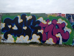 DOGMA (Brighton Rocks) Tags: brighton graffiti dogma