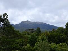 view of Mount Hagen in Papau New Guinea (Pete Read) Tags: view mount hagen papau new guinea