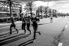 Maratón 42K Montevideo   170423-0000183-jikatu (jikatu) Tags: 162 42km carrasco gr jikatu marathon montevideo ricoh uruguay bw black white blackwhite monocrohme monocromo