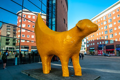 Lambanana (Tony Shertila) Tags: 20170315151218 centralward england unitedkingdom europe britain merseyside liverpool tithebarnst lambanana sculpture yellow outdoor outside street reflection university tarochiezo art artist gbr