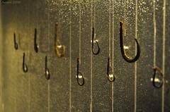 Anzuelos / fish hooks (Javiera C) Tags: museo museum chile sanmigueldeazapa azapa momias mummies chinchorro old antiguo cultura culture exhibición exhibition arqueología archeology patrimonio heritage indoor anzuelo fishhook