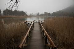Uña, Cuenca (ancarcotu) Tags: park spain uña cuenca lake water nature atmosphere fog niebla lago agua
