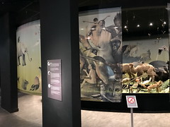 tilburg_1_048 (OurTravelPics.com) Tags: tilburg stuffed animals de dieren van jeroen bosch exhibition first floor natuurmuseum brabant