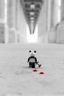 Panda Sadness
