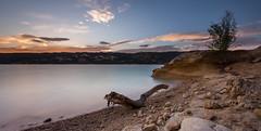 Lac de Sainte Croix II (eins75) Tags: lake sunset water sun stone wood clouds blue sunny provence var france hdr long exposure langzeitbelchtung see sonnenuntergang wasser sonne wolken baum ast blau sonnig sommer