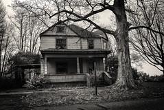 Channeling Boo Radley (drei88) Tags: bleak dreary grim dark empty forlorn memories desolate charged overgrown grimy stark