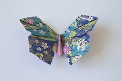 origami - farfalla 7 b (leti:::::::) Tags: origami pieghe carta paper passatempo giappone hobby farfalla butterfly origamiart animals flower scacciapensiero japan segnaposto fantasia fantasy color howtomake comofazer simbolo simbols art arte paperart hademade