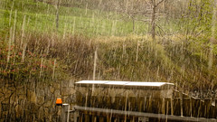 Heavy rain (I.Dostál) Tags: weather rain heavy nature green spring water wet