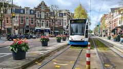 Tulpentram (Peter ( phonepics only) Eijkman) Tags: amsterdam city flowers tulips tulpen gvb combino tram transport trams tramtracks rail rails strassenbahn streetcars trolley nederland netherlands nederlandse noordholland holland