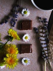 Last two peaces (sandra.slavuljica) Tags: chocolate milka milk sweets sweet food flowers table lavander daisy dandelion yellow white sunny delicious