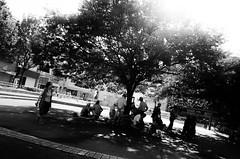 Street Fragments #270 - Osaka Daydream (Yoshi T. (kagirohi)) Tags: japan japanese osaka senbayashi blackwhite bw street streetphotograph streetphotography alley fragment urban city cityscape snapshot ricoh gr ricohgr 日本 大阪 千林 千林商店街 商店街 白黒 モノクローム モノクロ 路上 ストリート ストリートフォト 都市 風景 都市風景 スナップ スナップ写真 リコー 断片 blackandwhite monochrome depthoffield