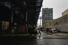 The Bridges (phillytrax) Tags: philadelphia philly pa pennsylvania cityofbrotherlylove 215 city urban usa america unitedstates metropolis metropolitan oldcity downtownphilly centercity benfranklinbridge benjaminfranklinbridge thebridge manwalking
