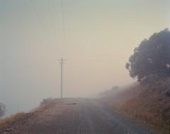 (roundtheplace) Tags: landscape landscapephotography australia australianlandscape analogphotography australianbush mediumformat mist fog mountains pentax67 portra portra160 snowymountains snowhydroscheme
