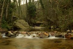 Riera de Riells (Hachimaki123) Tags: paisaje landscape montseny parcnaturaldelmontseny cascada waterfall water agua río rio river riera riu rieraderiells