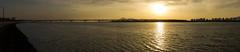 Nakdong river at sunset (Sacule) Tags: nakdong river rio water sunset sun panoramic panorama pasted paisaje pano contrast busan southkorea asia mouth desembocadura atardecer wide canon 600d sigma1770 winter 2017 quiet travel yellow oriental corea