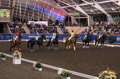 17429_Sydney_CDI_Quadrilles_0030.jpg (FranzVenhaus) Tags: athletes dressage australia equestrian riders horses ponies rug siec nsw sydney newsouthwales aus