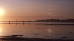 Tranquil evening (Coos Bay, Oregon) (Jeff Goddard 32) Tags: sunset coosbay oregon cooscounty crabflats sundog parhelion reflection