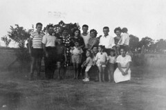Italian family in Inglewood (State Library of Queensland, Australia) Tags: family italian queensland immigrants italians statelibraryofqueensland immigrations slq italiansinqueensland