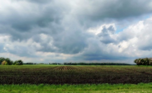Farm Horizon - Project Flickr wk 25