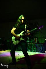 Guitarra I (Marcela Toledo M) Tags: animal leo concierto musica tu destino solitario huila jimenez neiva