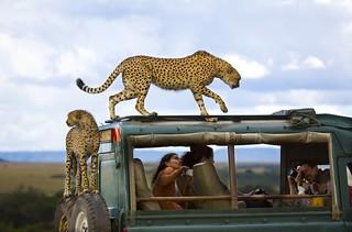 【组图】《国家地理旅行者》2013年摄影比赛获奖作品